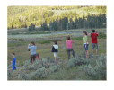 photo ©Anne Turynlooking for wolves in Yellowstone National Park