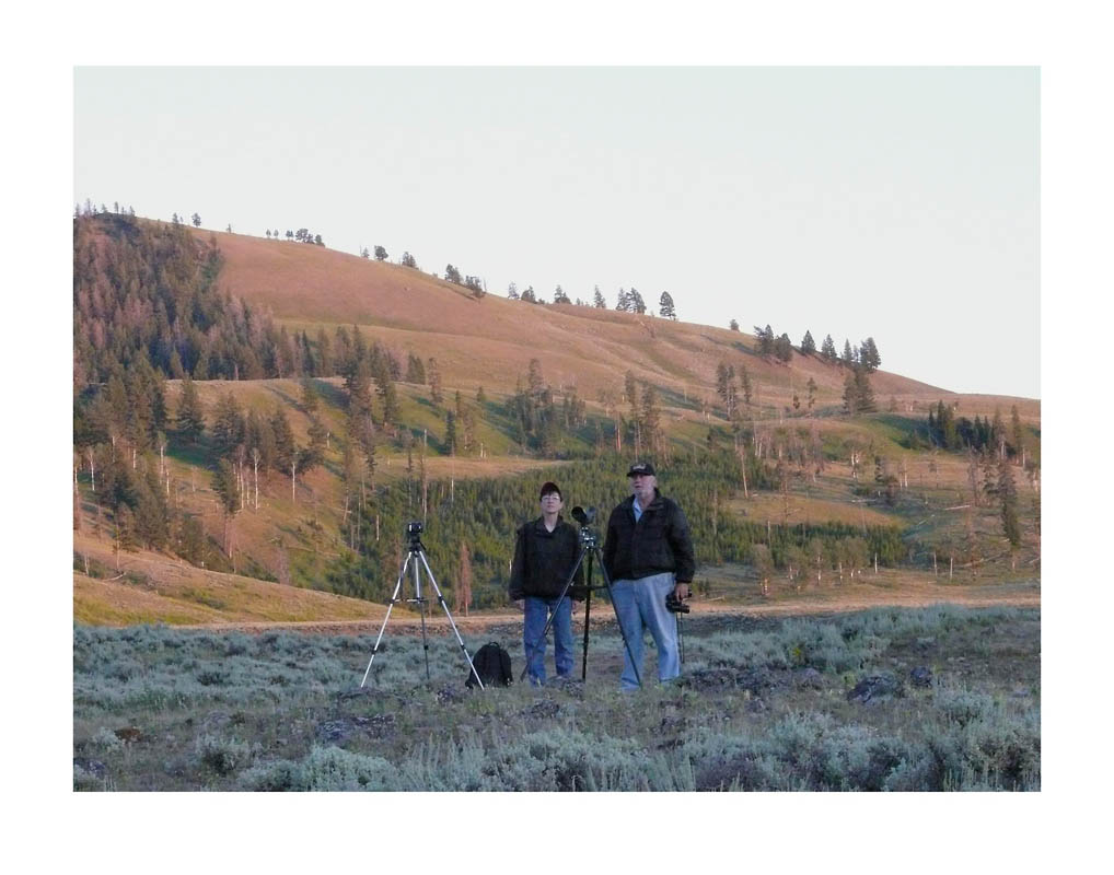 photo ©Anne Turyn looking for wolves in Yellowstone National Park