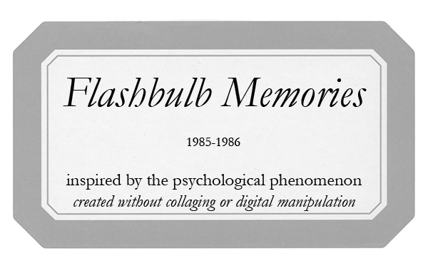label-Flashbulb-Memories-box-label_