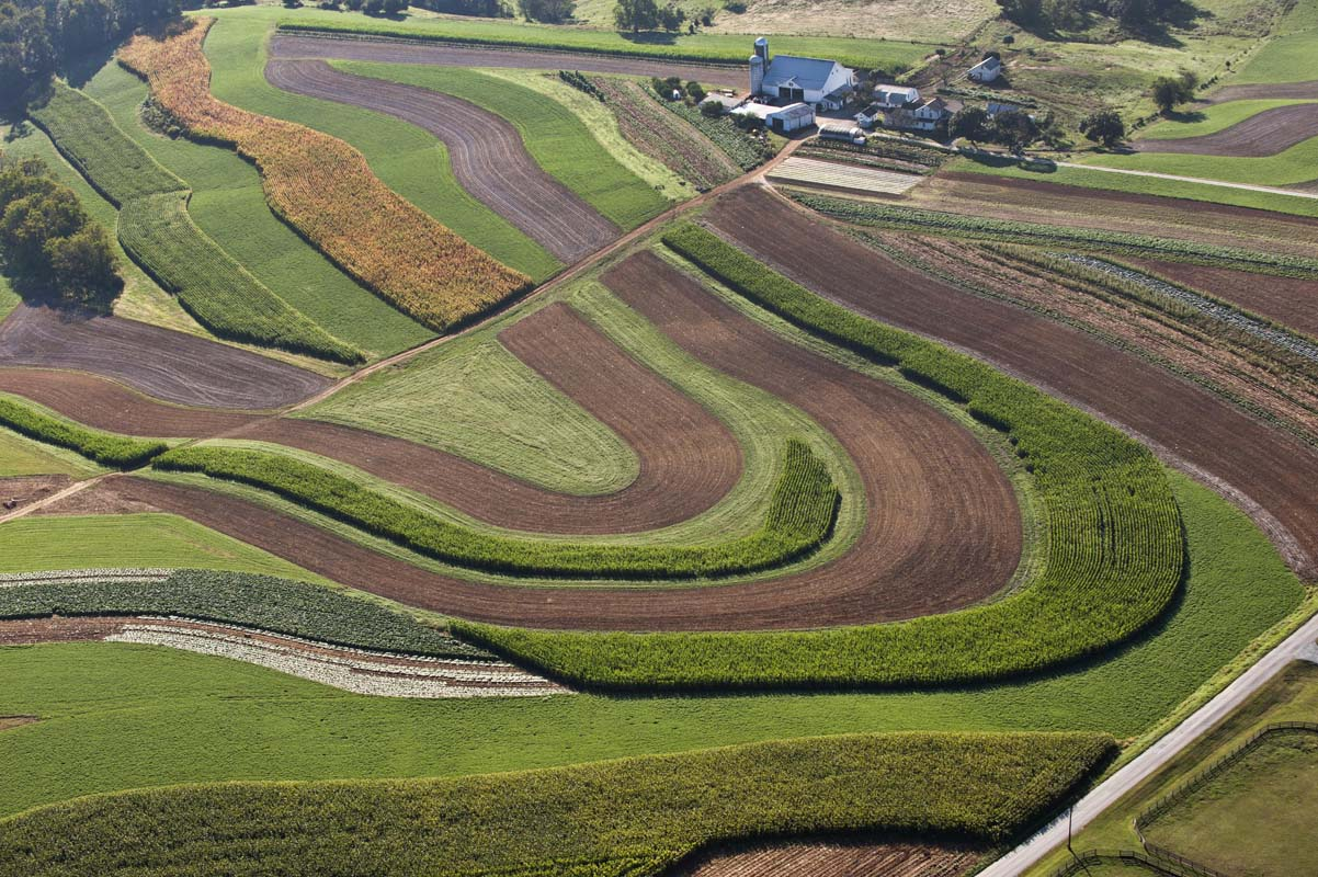 curved pattern of crops from the air