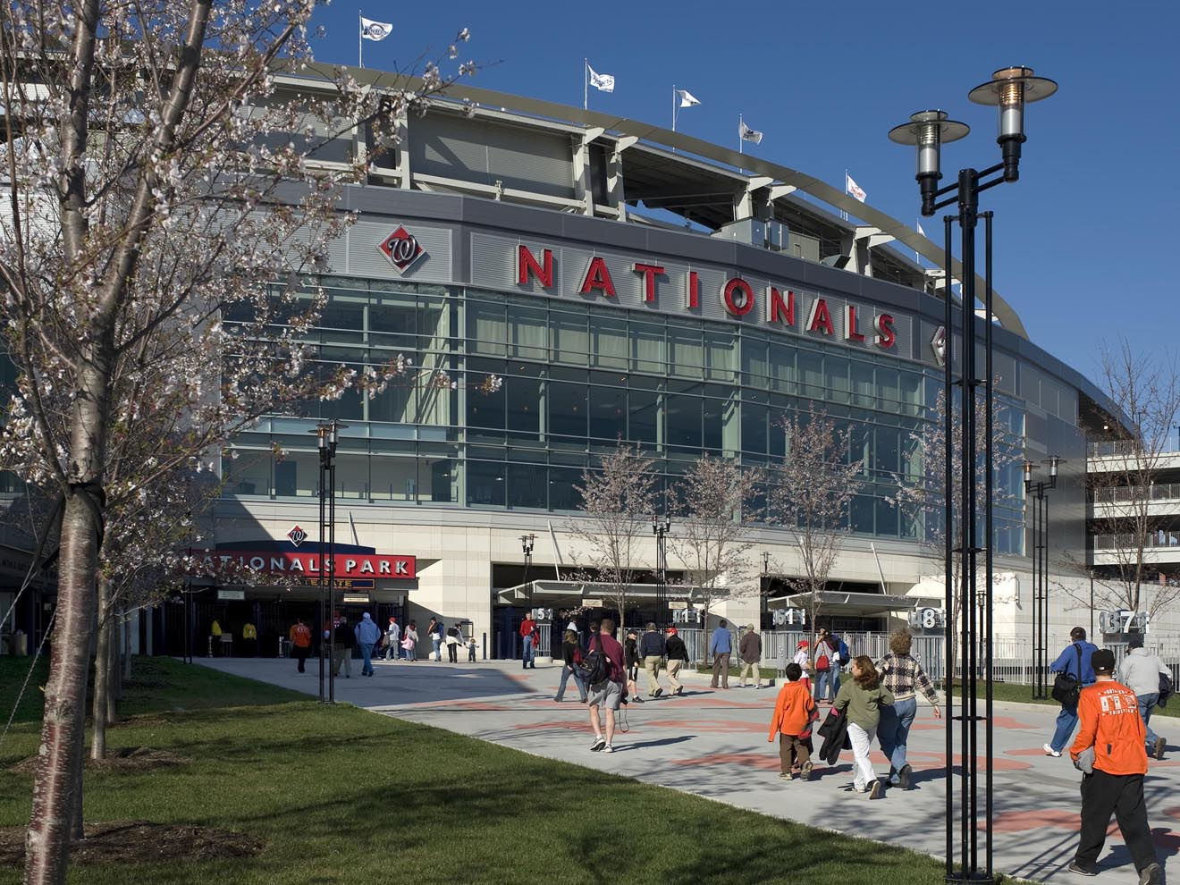 Fans entering stadium at cherry blossom season