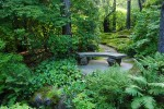 stone bench surrounded by lush landscape