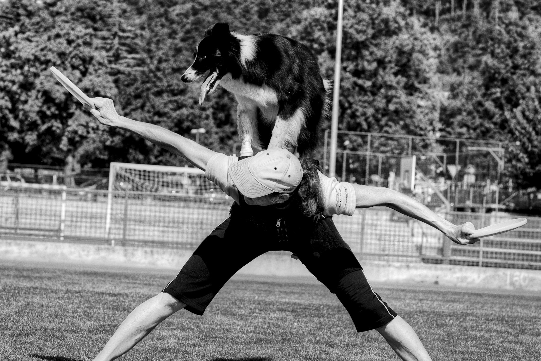 Lyra performs a back stall during practice at a sports field in Sežana, Slovenia, September 15, 2010.