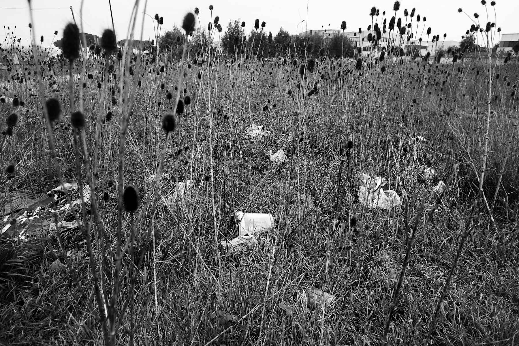 A neglected lawn in an industrial part of Caserta on the outskirts of Naples on February 21, 2008.