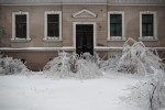 Frozen bushes are seen in front of a house in Postojna, Slovenia, February 5 2014.