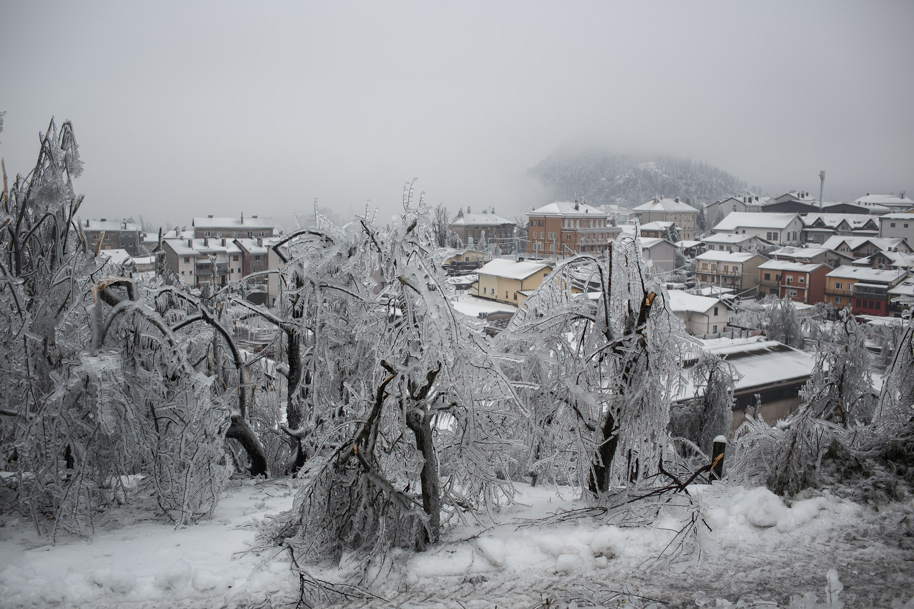 Broken trees covered in thick layer of ice overlook the town of Postojna, Slovenia, February 5, 2014.