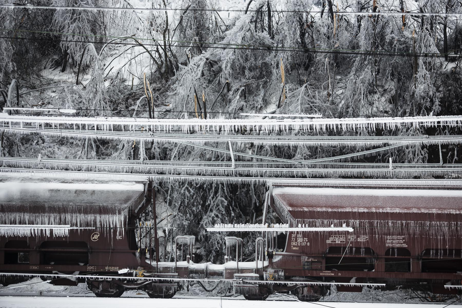 Train cars are seen covered in ice among broken trees and frozen powerlines in Postojna, Slovenia, February 5 2014.