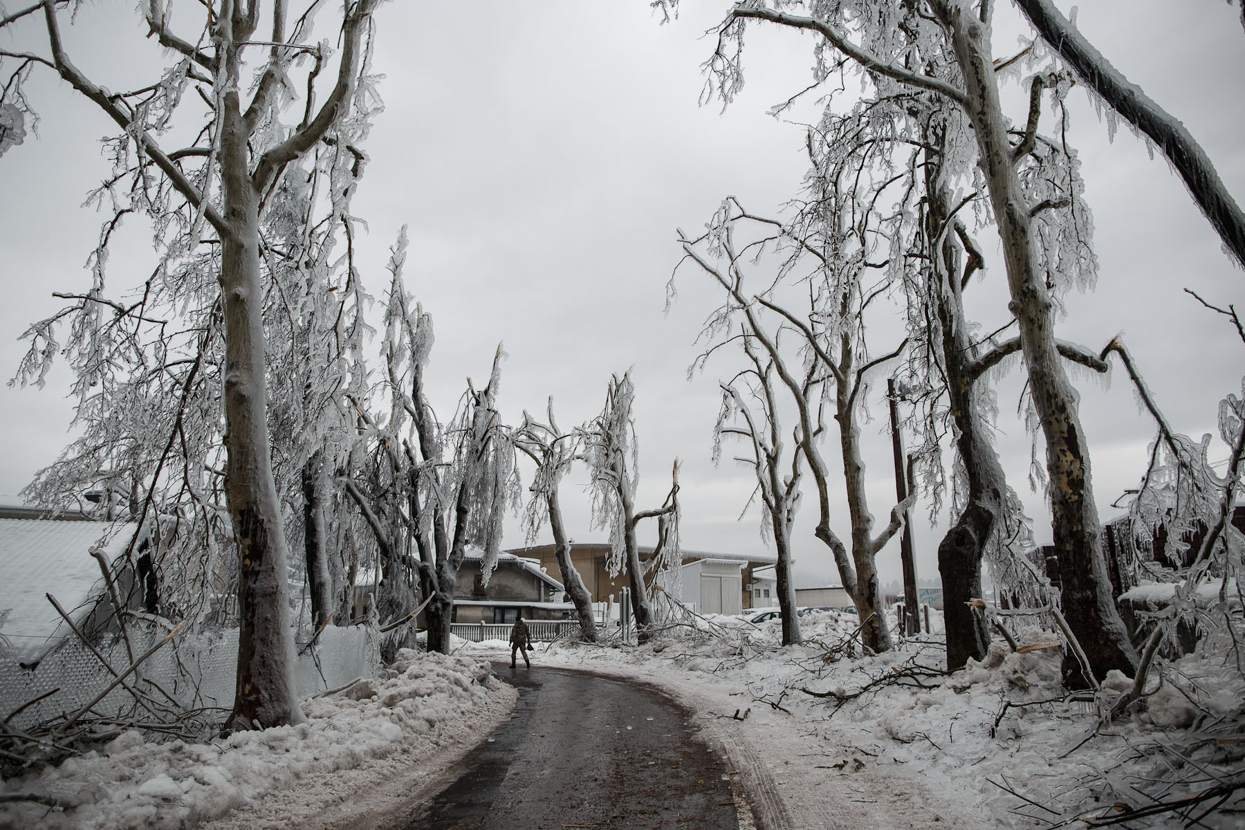 A soldier passes a line of broken trees near the trainstation where the army helped clear the tracks in Postojna, Slovenia, February 5 2014.