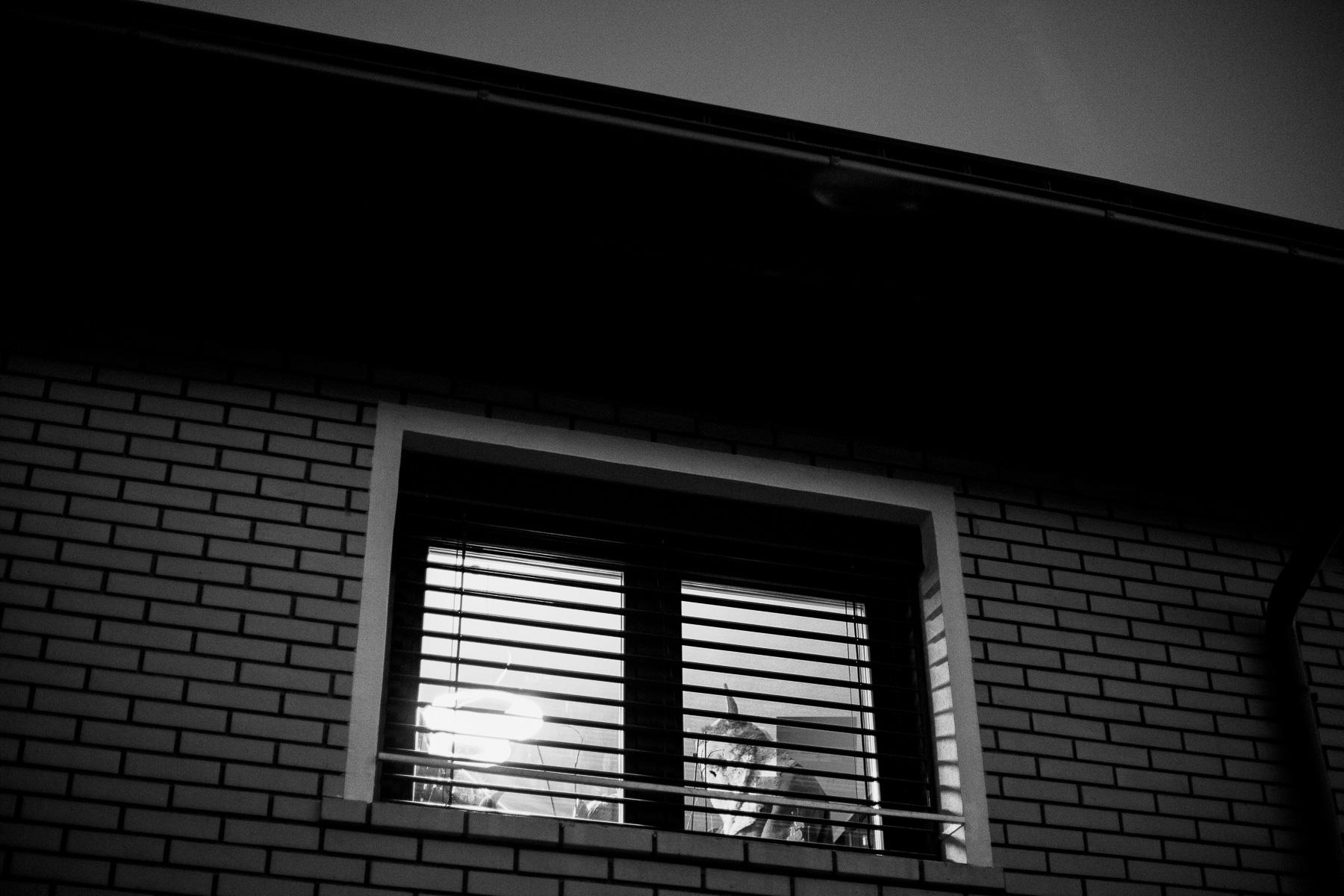 KrampusDuplje-photoLukaDakskobler-006