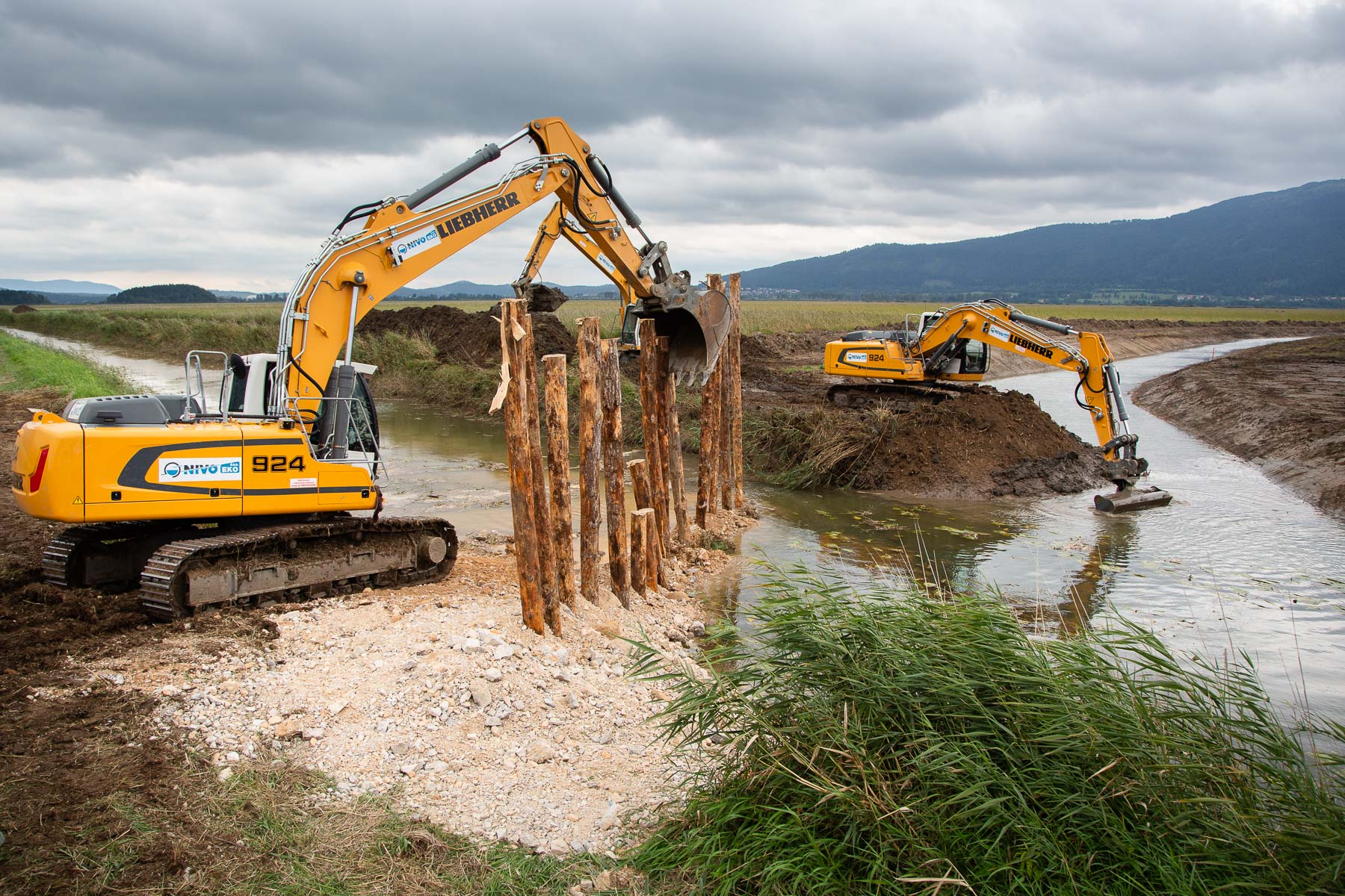On September 2019 restoration is well underway. On September 6, 2019, the Notranjska Regional Park as part of the Life Stržen project diverted the Stržen stream that fills the lake into its restored meanders. The riverbed of Stržen was straightened 200 years ago to make water flow away faster, thus preventing the field to become a lake. With the stream back in its old menaders and two other minor streams partially restored, the lake is now 80% restored to its state before human intervention 200 years ago.