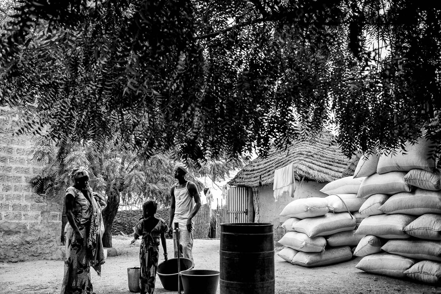 Family members of a local peanut producer who rents the land from the African Oil Corporation company stand in the courtyard of their home in Lamboki, Kaolac region, Senegal. Until 2013, the African National Oil Corporation was leasing the acquired land to other people who were using it to grow crops for their small scale production. Although conditions of the lease were not officially confirmed, some villagers are claiming that the lease annually provided the company with almost as much money as they had paid the villagers for their land. The practice of leasing the land has ended in 2013 when the company itself started using the land for peanut plantations.