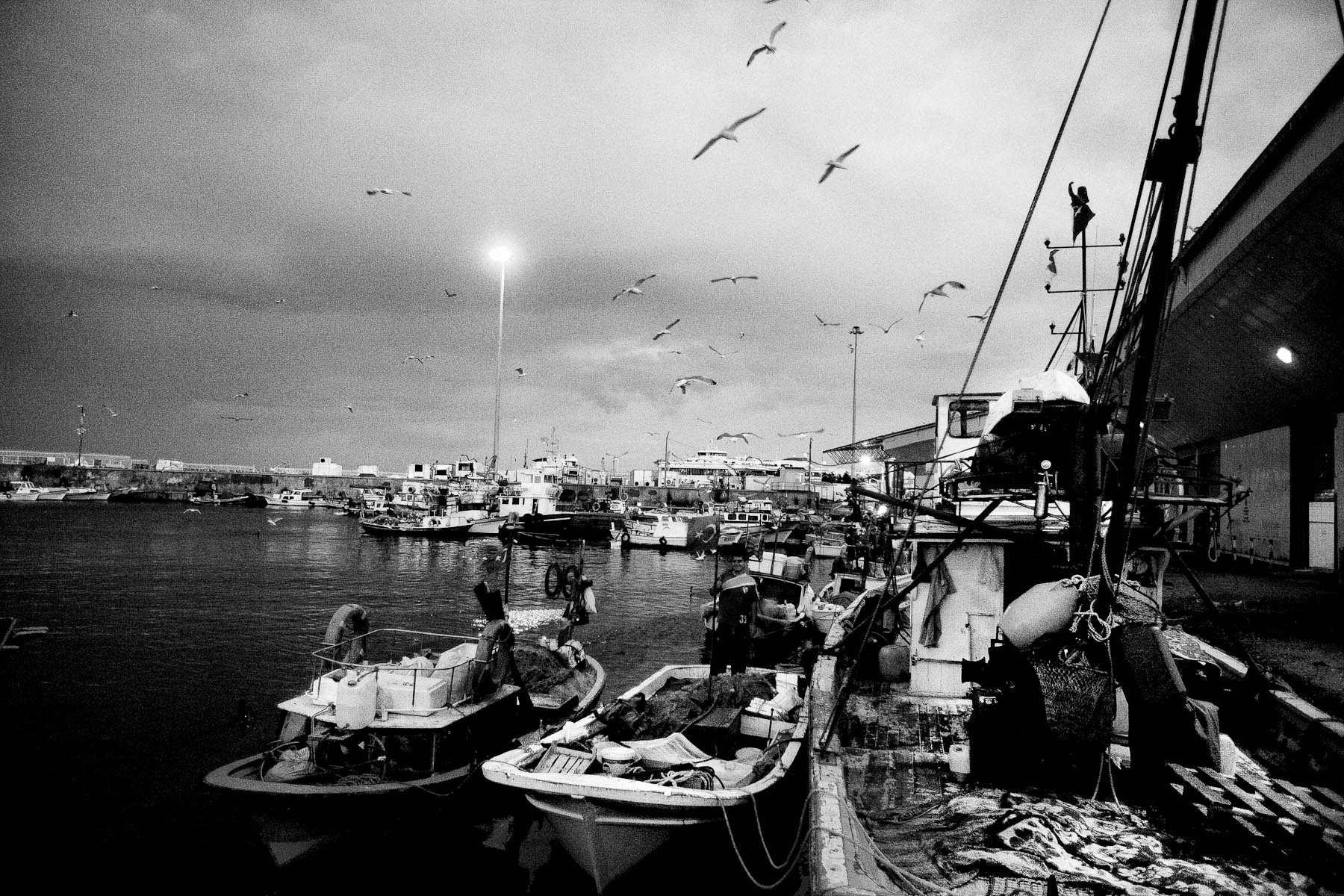 By dawn, the distribution bazaar in the fishing port of Kumkapi is full of fishermen, buyers, restaurant owners, shop owners, buying the fish for their business. Thousands of tourists in Istanbul will eat thousands of fish during the day.