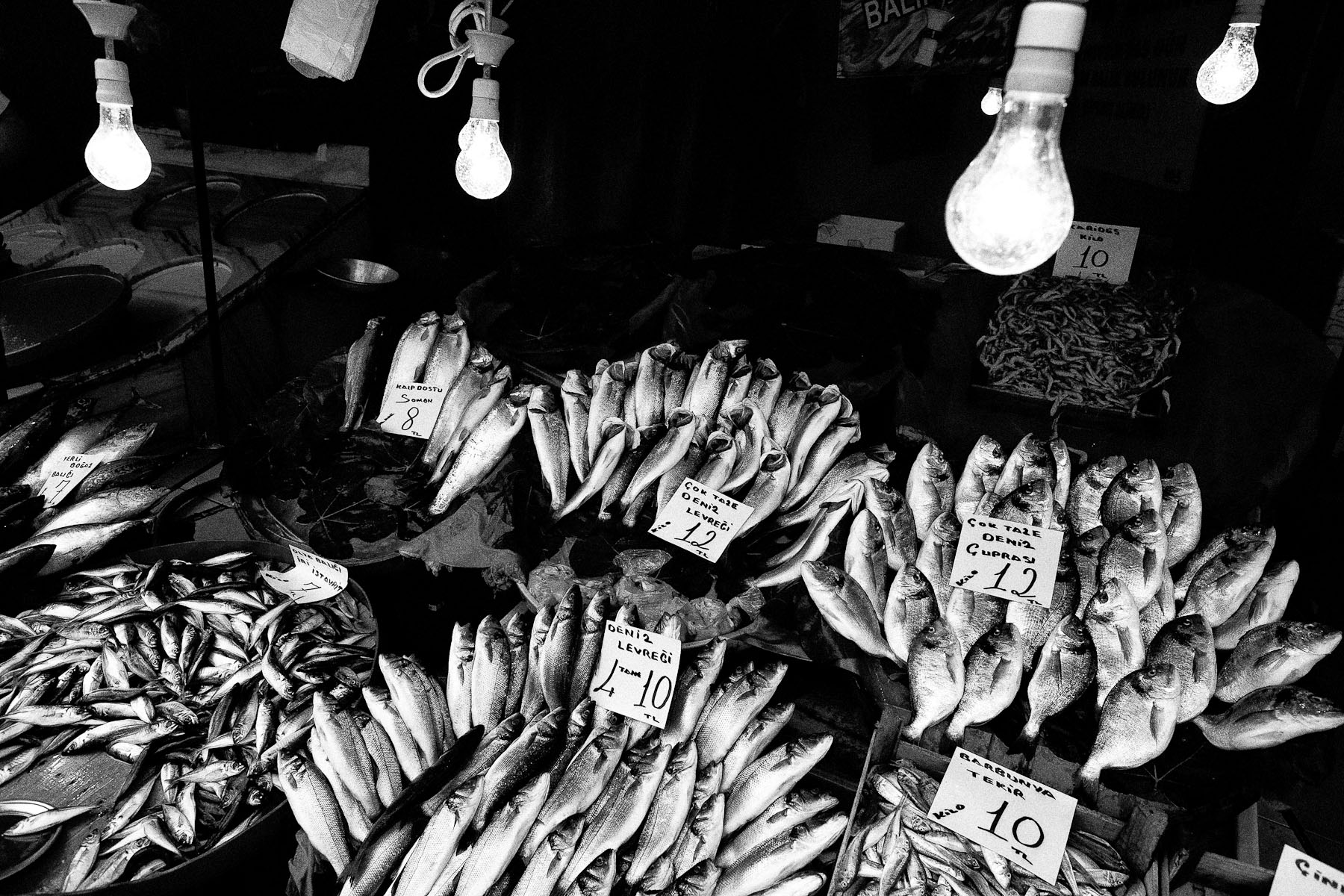 A selection of fish rests on a stand in the Karakoy fish market, the popular fish market in the heart of Istanbul, on 24th June 2010. Most of the small fish here come from local fishermen like Adem, Cevat and Cinar, fishing long nights on the Marmara sea.