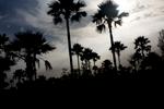 Senegal-photoLukaDakskobler-001