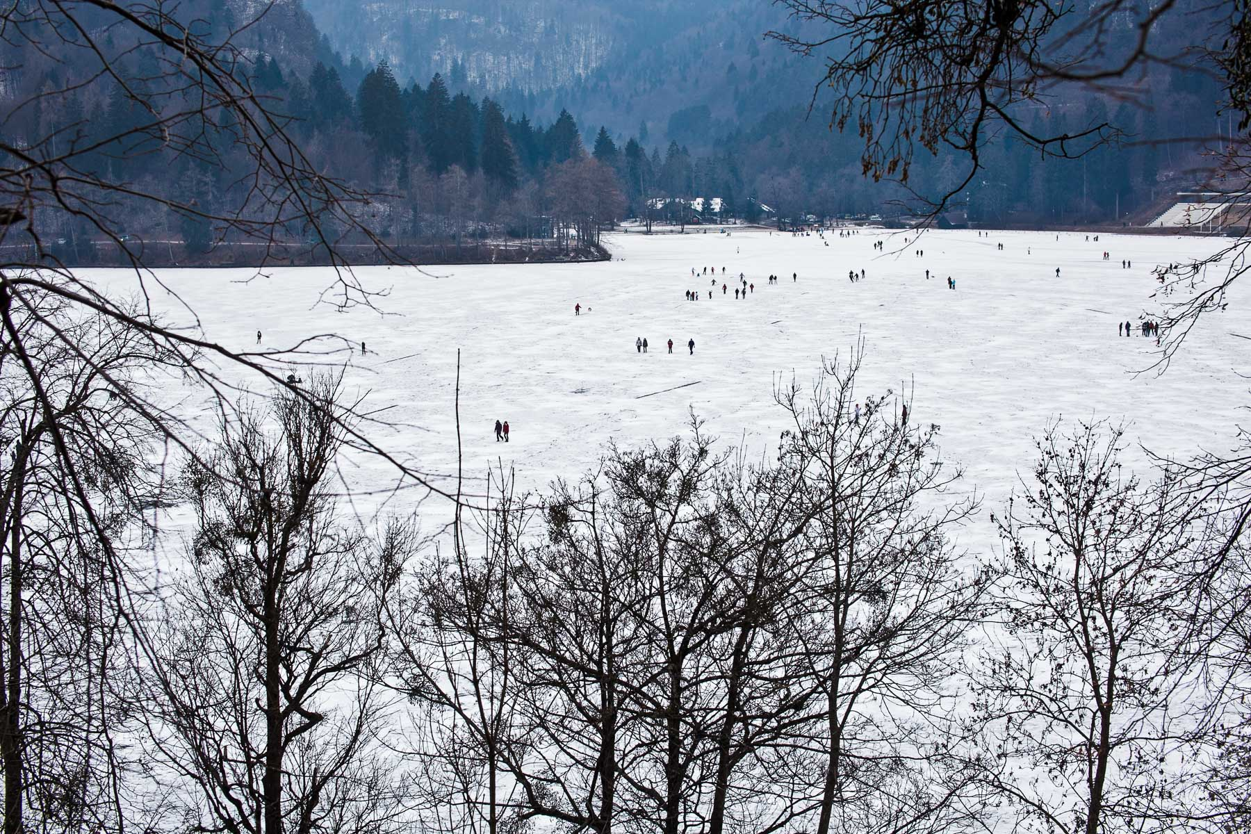 Lake Bled (frozen)