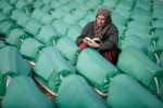 A woman prays among the rows of coffins at the Potocari cemetery in Srebrenica on July 11, 2010, before the memorial ceremony and mass burial of 775 newly identified victims of the 1995 Srebrenica massacre.