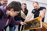 Ljubljana Beekeeping Trail, an organised tour of beehives in the city and history of urban beekeeping in Ljubljana. In 2017, the running Slovenian Bee Queen joined one of the tours.