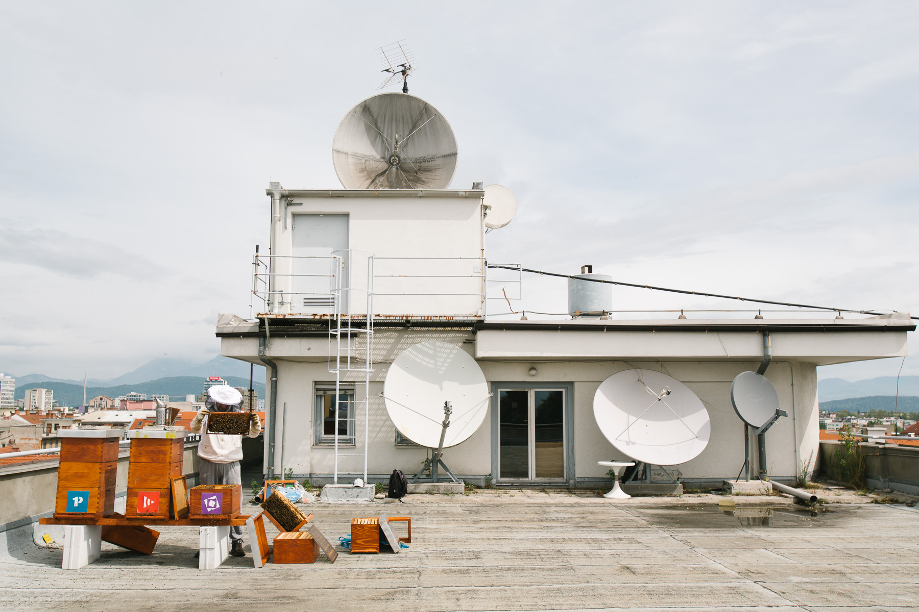 Beehives on the rooftop of Radio Slovenia.
