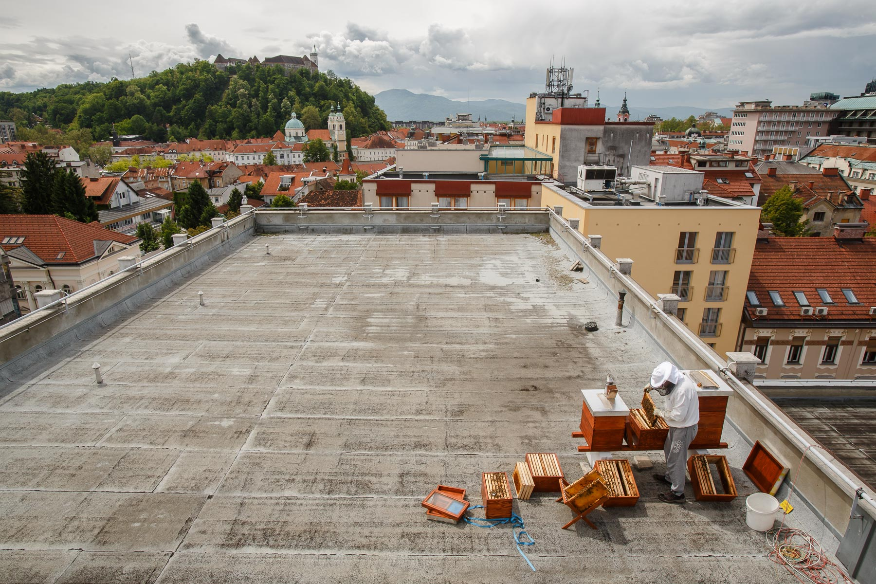 Gorazd Trušnovec inspects beehives on the rooftop of Radio Slovenia.