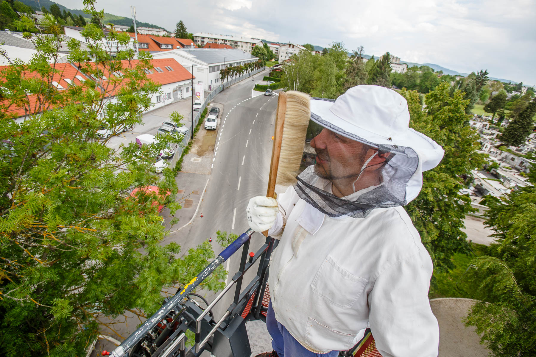 Trušnovec  sweeps of bees from his mask after removing a runaway swarm from a treetop in Ljubljana. In picking up swarms he often needs help of local fire departments that provide a ladder.