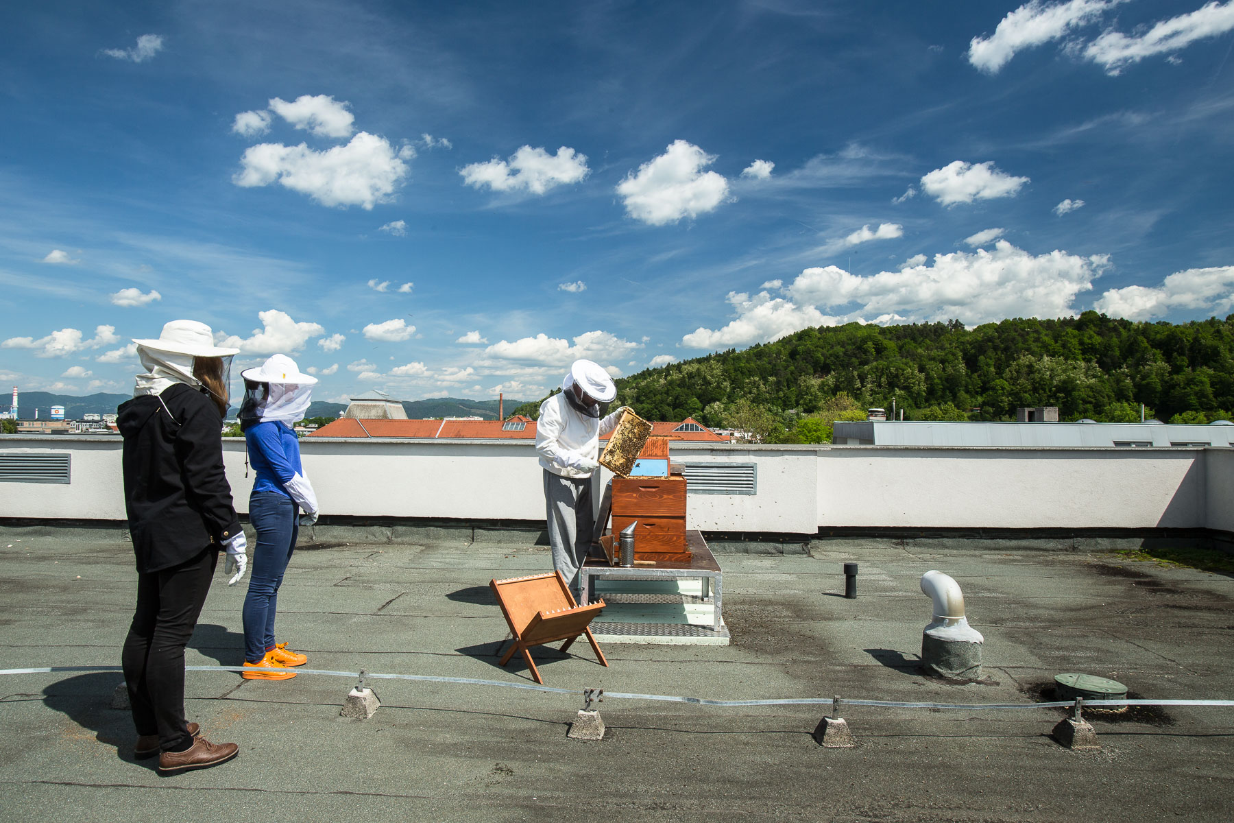 Trušnovec shows the beehives to students on the roof of  the Ljubljana Secondary School of Trade during a beekeeping class.