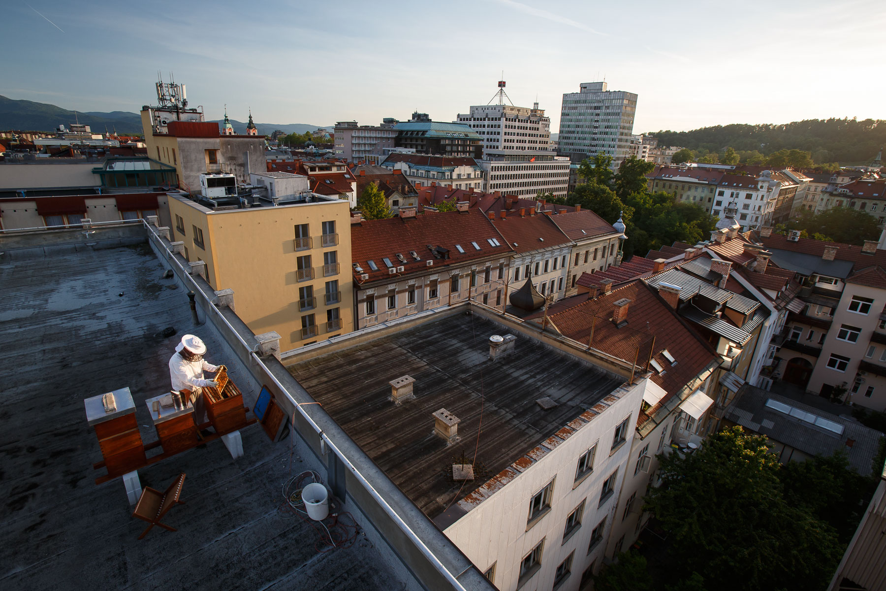 Trušnovec inspects the beehives on the roof of Radio Slovenia in late afternoon.