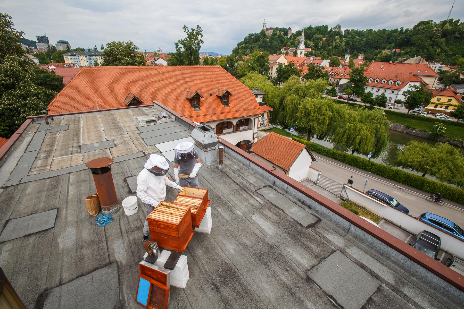 Trušnovec inspects the beehives on the roof of the Urban Planning Institute of the Republic of Slovenia in Ljubljana. Joining him is an employee who is a beginner beekeeper.
