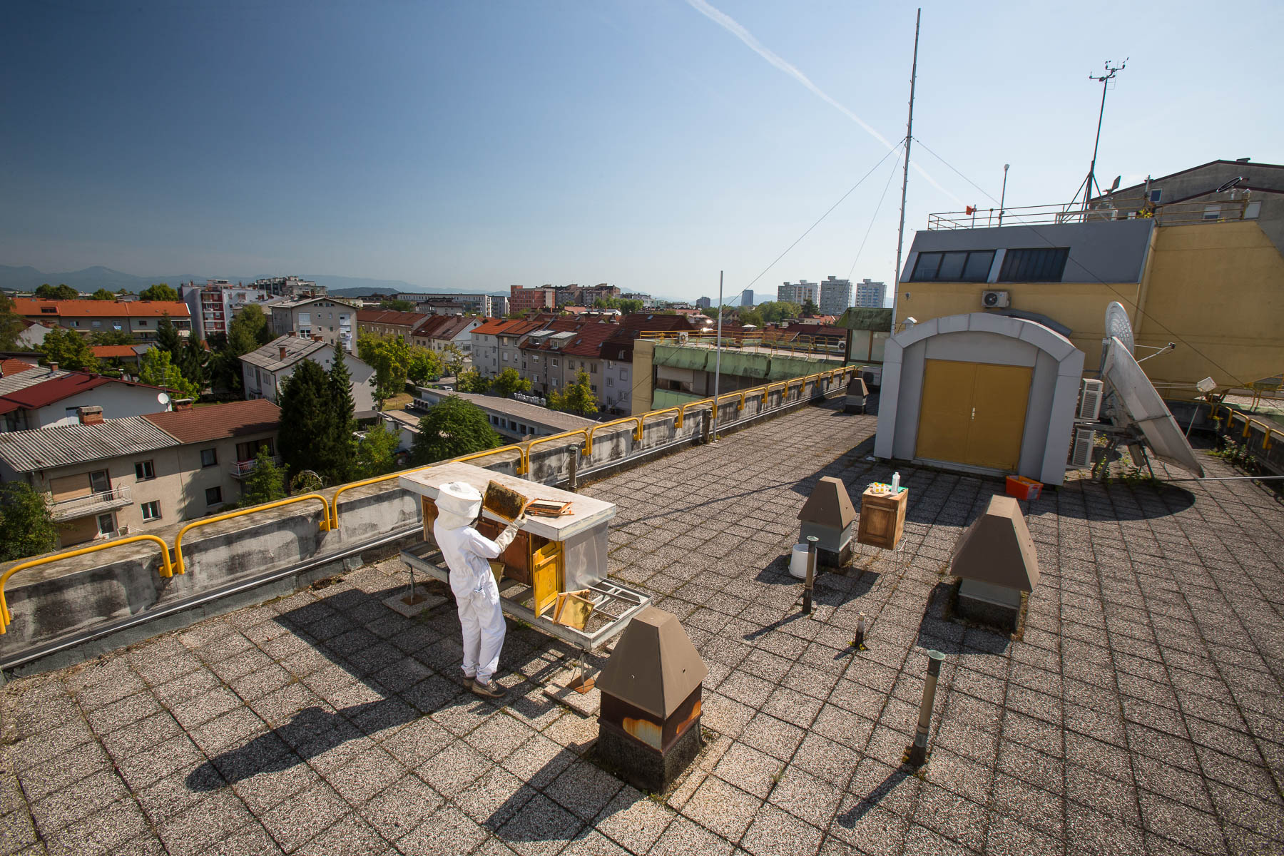 Urban beekeeper Žiga Logonder inspects the beehives on the rooftop of the Slovenian Environment Agency.
