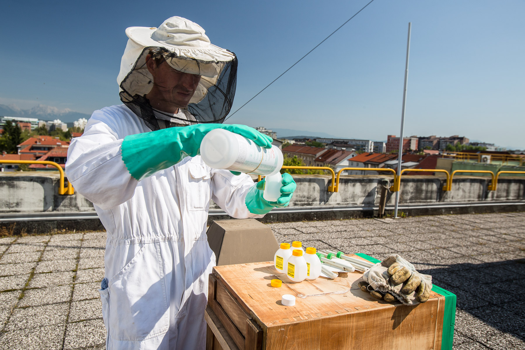 Žiga Logonder on the rooftop of Slovenian Environment Agency administers formic acid to fight spreading of varroa, the most dangerous parasite to bees.