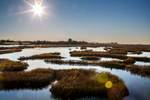 Venice_and_lagoon-photoLukaDakskobler-026