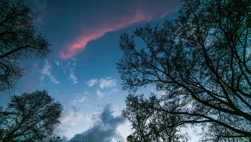 Cloud Roll