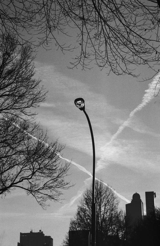 Crisscross, Central Park