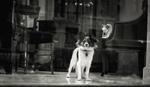 DOG_WINDOW2