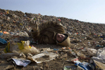 ULAAN BAATAR, MONGOLIA-MARCH 5 :  Turu, a Mongolian worker collapses after having a serious seizure while working collecting and recycling the garbage at a dump March 5, 2010  in Ulaan Baatar, Mongolia. Working at the garbage dump means extreme hardship, long hours outside in frigid temperatures dropping below -25C in the Winter as Mongolia experienced one of the worst Winter in 30 years. Presently the government has declared an emergency requiring foreign aid to alleviate the impact of the {quote} Zud{quote} ( Mongolian term for a multiple natural disaster) caused by bitter cold and thick snow. Currently 1.5 million goats,  921,000 sheep, 169,000 cows and yaks, 89,000 horses and 1,500 camels had died according to the various UN agency reports. Many Mongolians have immigrated to the capitol city from the far away provinces seeking employment, living in rented traditional circular felt yurts with no running water or electricity.(Photo by Paula Bronstein /Getty Images)
