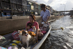 BANGKOK,THAILAND - OCTOBER 29: A Thai family evacuates with all their dogs in a boat through a flooded neighborhood near the Chayo Praya river as rising waters threaten parts of the capitol city October 29, 2011 in Bangkok, Thailand. Hundreds of factories have been closed in the central Thai province of Ayutthaya and Nonthaburi. Thailand is experiencing the worst flooding in over 50 years which has affected more than nine million people. Over 400 people have died in flood-related incidents since late July according to the Department of Disaster Prevention and Mitigation.(Photo by Paula Bronstein /Getty Images)