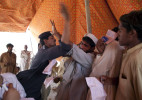 pakistanwebsite13A