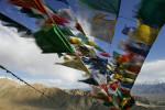 tibetan_website08