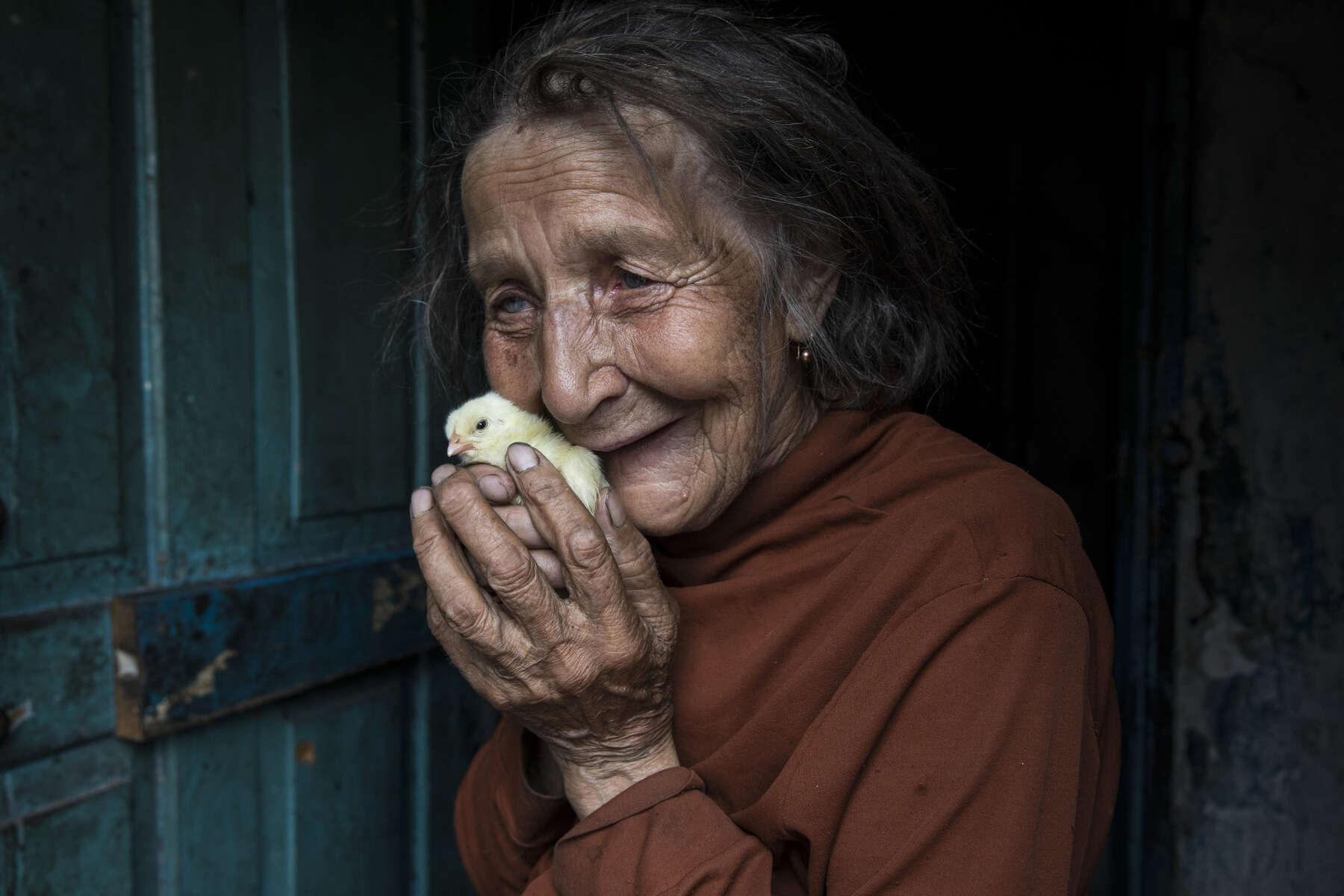 ( Opid-ne ) Opytne, Eastern Ukraine:  Mariya was killed at the age of 77, her home caught on fire from an oil lantern, firefighters couldn't access the home because of the dangers of the front line village, largely controlled by the Ukrainian military. She is seen holding new chicks delivered by ICRC as part of a humanitarian aid service for elderly that live alone. This allows her to raise chickens making a small income. Mariya often speaks with tears in her eyes while talking about the death of her son and her husband. Her son Victor,48, was fatally injured by shelling  in 2016 that hit the home. He died in her arms. Her husband, passed away the same year from a heart attack caused by extreme stress of living too close to the front line. She refuses to leave her village because her family are buried near by.{quote}I have nowhere to flee, my whole family is buried here.{quote}  {quote}I got used to the continued shelling.{quote} Opytne is a war torn village on the contact line where only 43 people are left due to the dangers.