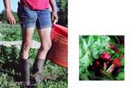 Carmel_Farm_Page_21