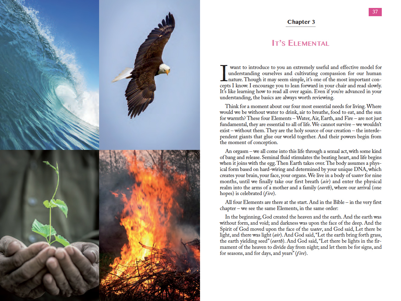 Client: Debra Silverman and Findhorn Press Project - Book: The Missing Element Details: llustrate chapter openers for The Missing Element. Illustrate the human personality types and characteristics found in Water, Air, Earth, and Fire.