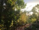 ElevenInterlude (Morning)