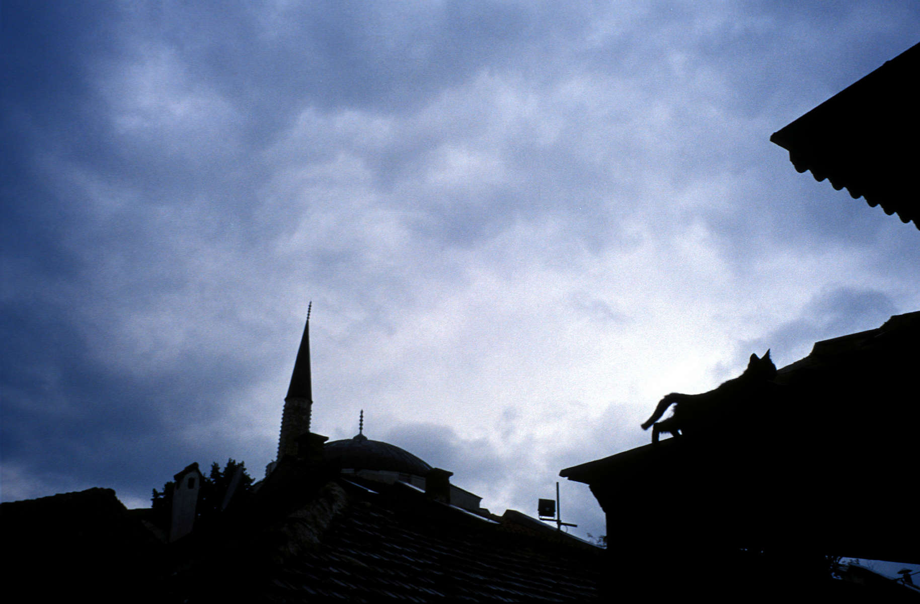 Cat climbs along the rooftops of bascarsija, the old Ottoman center of Sarajevo. April 2002.