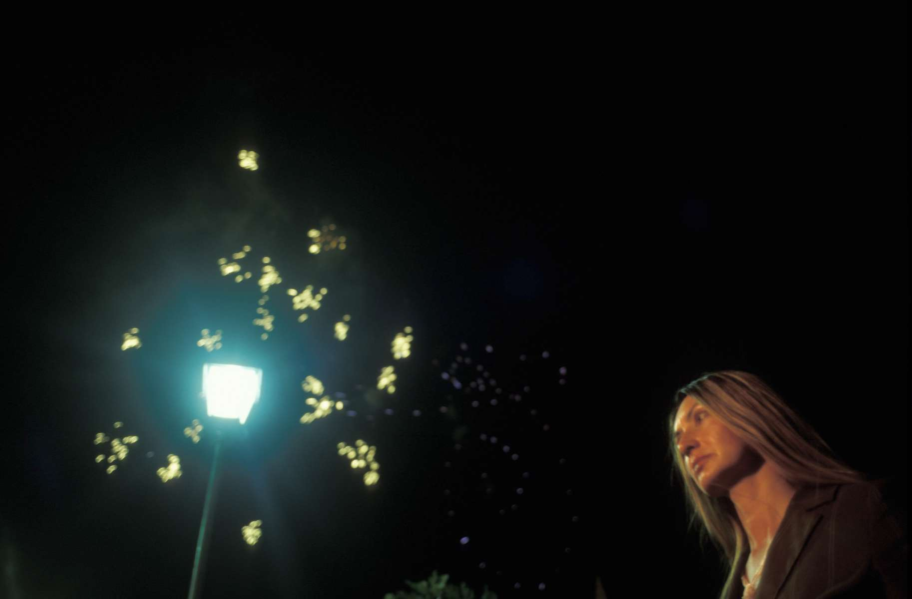 A television reporter waits to do a live report as fireworks light up the sky during the dedication ceremonies of the rebuilt Mostar Bridge.