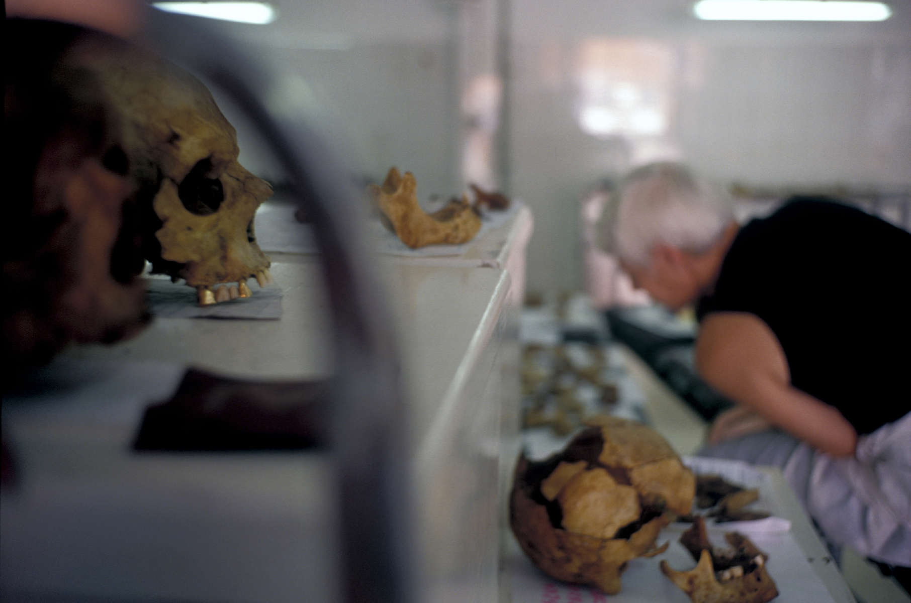 Forensic anthropologist Ewa Klonowski examines skeletons exhumed from a mass grave near Foca, in eastern Bosnia.