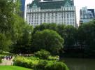 Central Park Vista