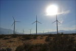 Wind energy rising: Wonderful wind farm rising up out of the California desert.