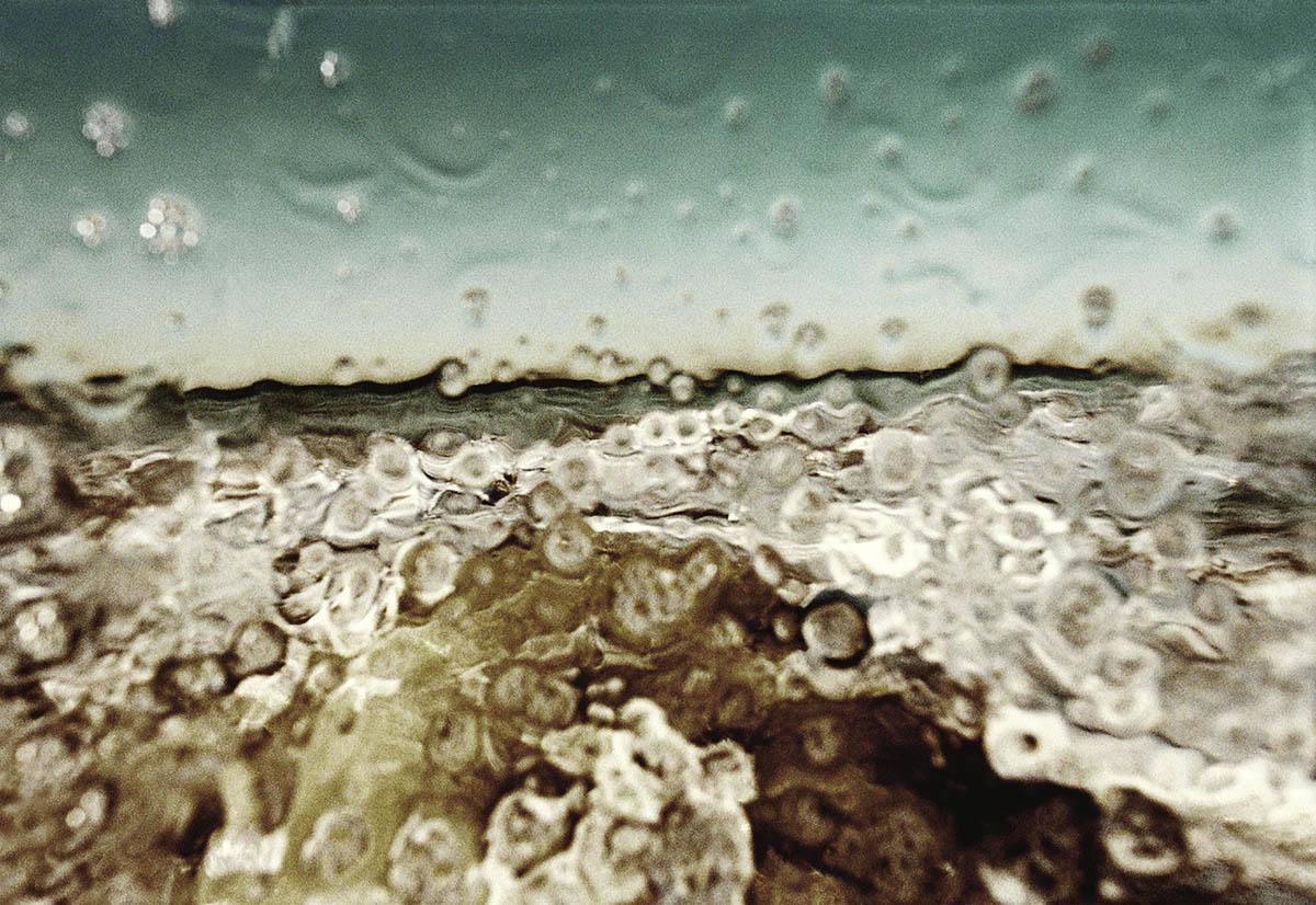 Splash, NIN