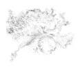 Drawing-Field-MW-1