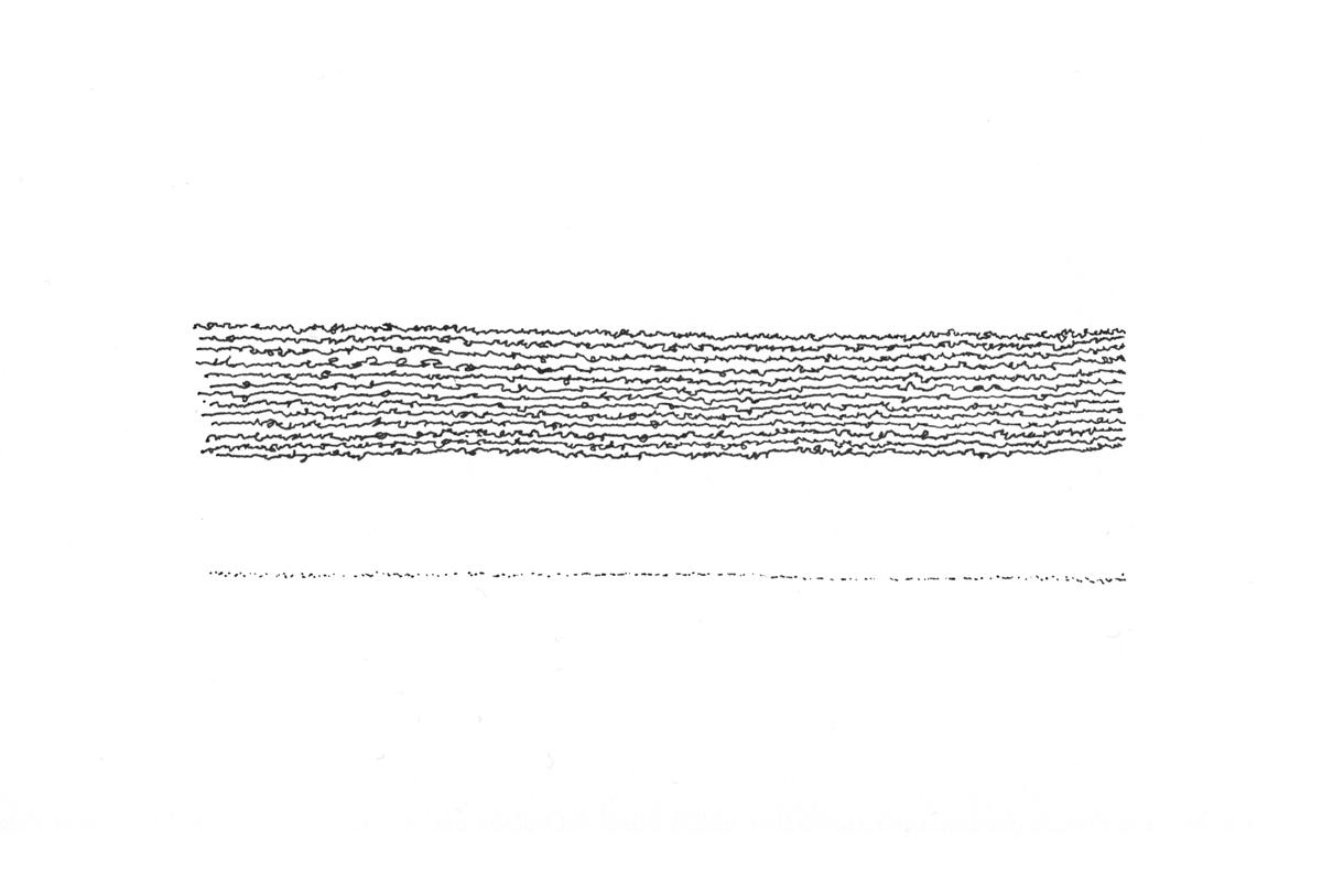 Drawing-Samson-Life-Lines-MW