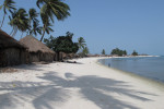 Island_life-4
